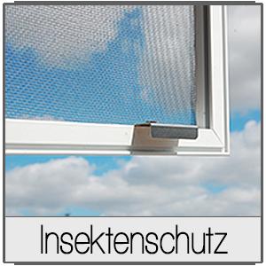 Fenster in Wiener Neustadt